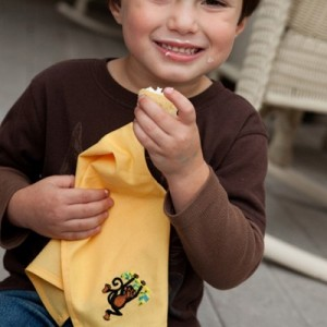 Fabkins reusable napkins for kids