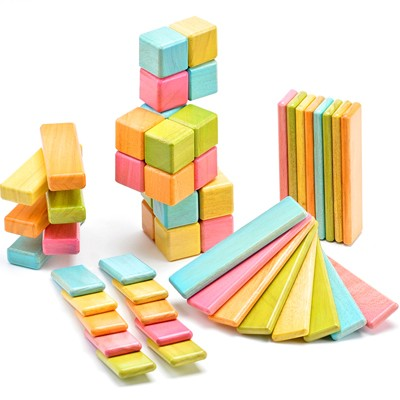 Tegu wooden toy blocks