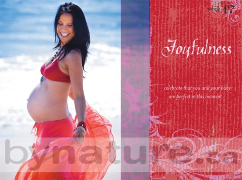Sacred Pregnancy book