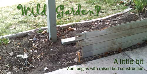 Even a busy parent can plant a wild garden
