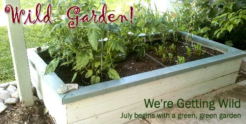Wild Gardens for Busy Parents July