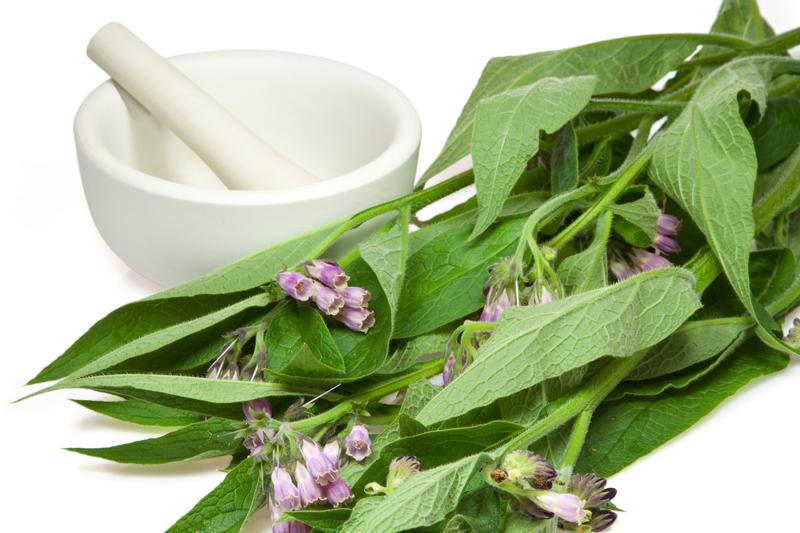 Preparation of comfrey