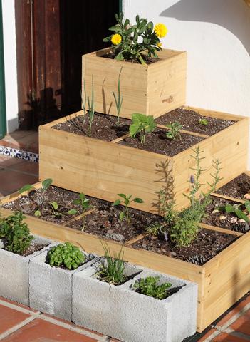 Urban Square Foot Garden