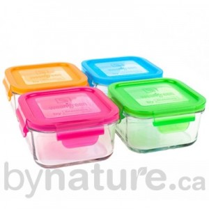 Wean Glass Sandwich container