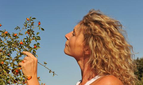Woman looking at rose hips