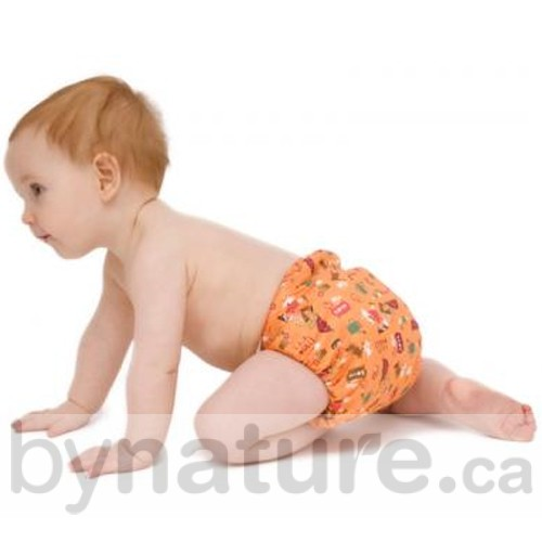 All-in-one cloth diaper from Tots Bots